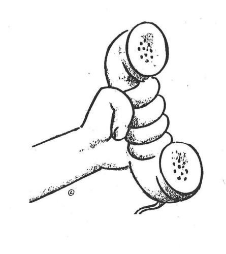 mão telefone